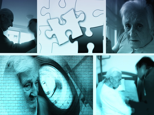 péče o důchodce