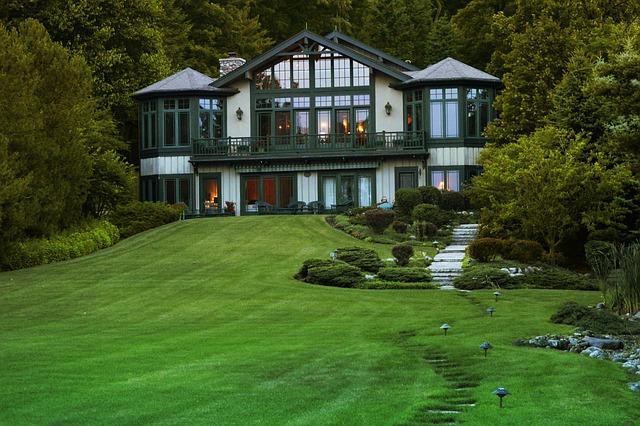 dům za lesem