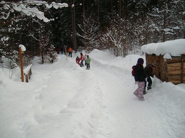 procházka ve sněhu