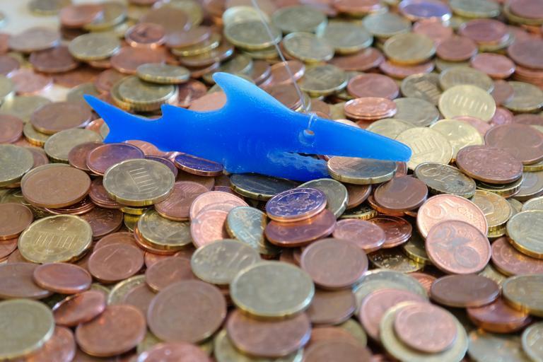 finanční žralok