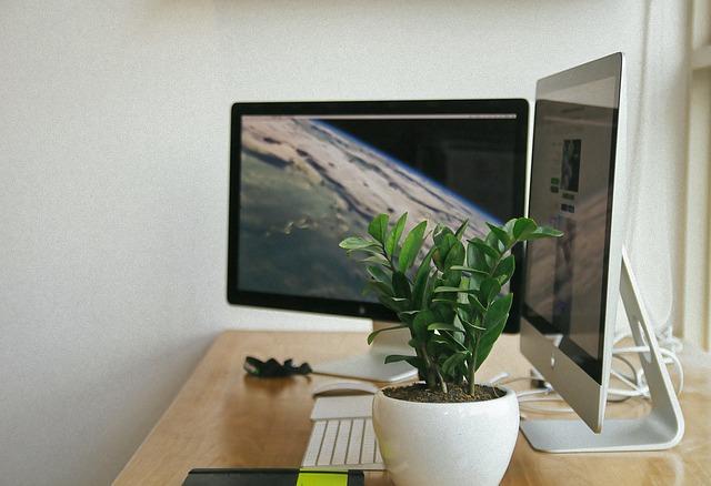 monitory v koutě.jpg